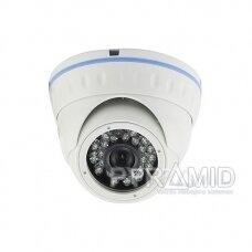 Analoginė vaizdo stebėjimo kamera Longse LIRDNSM