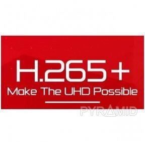 Kodavimas H.264/H.265/H.265+/MJPEG