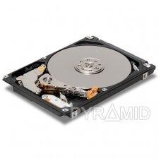 Rekomenduojamos kietojo disko talpos vaizdo įrašymo įrenginiams